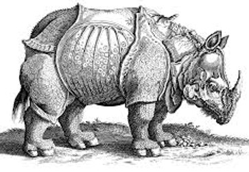 The Rhinoceros, by Albrecht Durer, 1515
